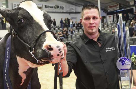 Entre los rasgos de la vaca más valorados están la piel tersa, los ojos brillantes, una ubre ancha y venosa y una parte posterior alta. Foto: EFE